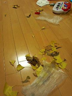 秋を満喫できる我が家